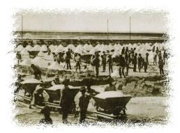 trasporto del sale con carrelli nelle saline di margherita di savoia